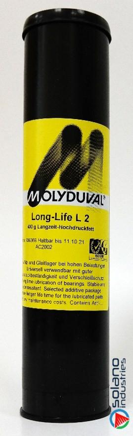 Long-Life L2